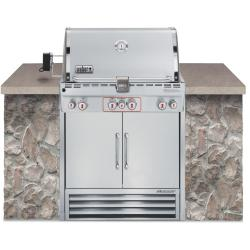 Brand: WEBER, Model: S460X, Fuel Type: Natural Gas
