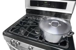 Brand: FRIGIDAIRE, Model: GLGF389GB