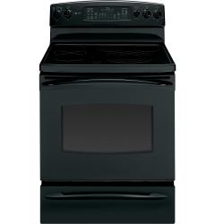 Brand: GE, Model: PB915STSS, Color: Black