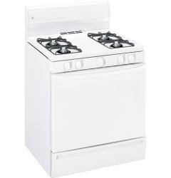 Brand: GE, Model: JGBS04PPTWW, Color: White