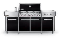 Brand: WEBER, Model: 291101, Fuel Type: Natural Gas
