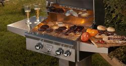 Brand: American Outdoor Grill, Model: 24NP01SP