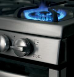 Brand: General Electric, Model: PGS950SEFSS
