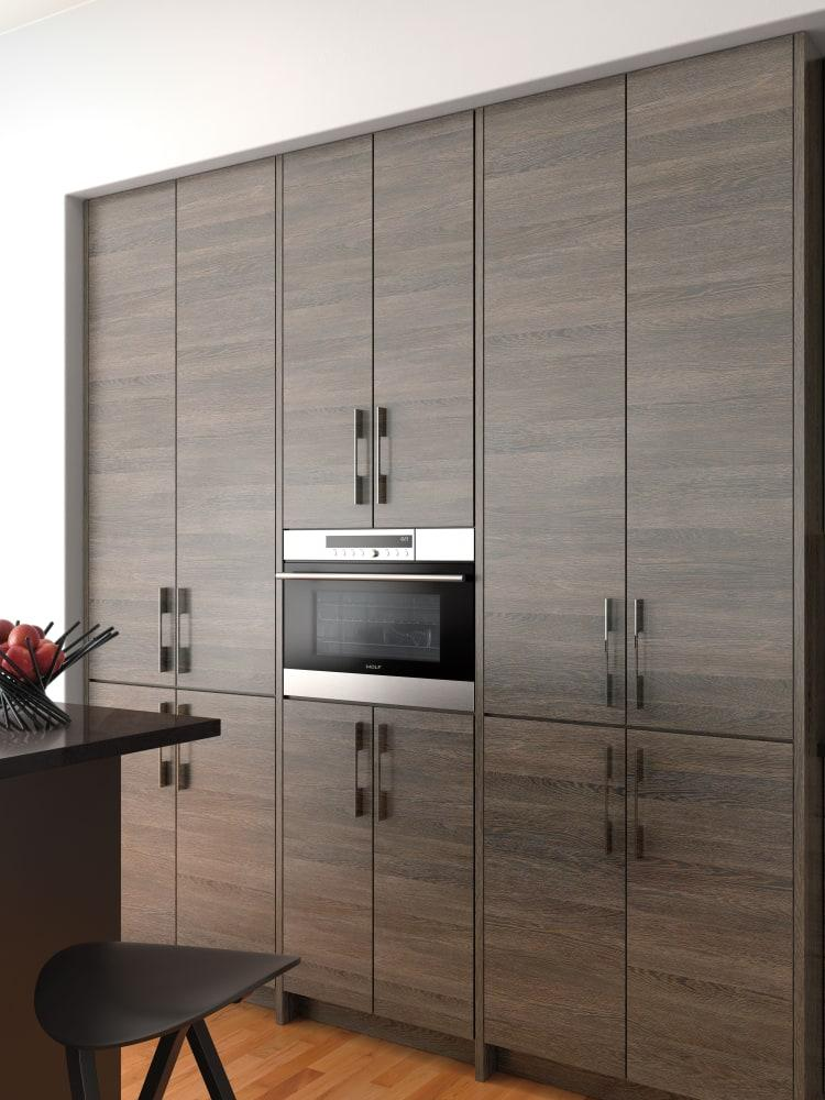 Wolf So24testh 24 Inch Single E Series Convection Wall