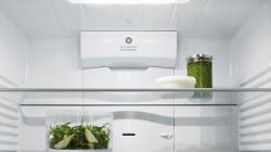 Brand: Fisher Paykel, Model: RF170ADW5N