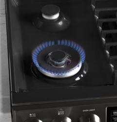 Brand: General Electric, Model: PGS960SELSS
